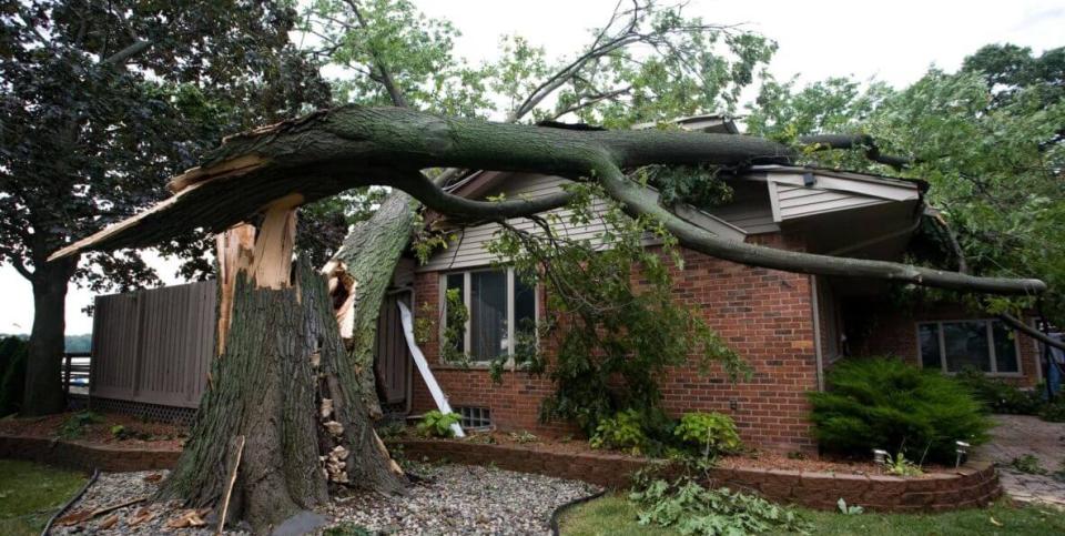 Emergency Tree Service Pittsburgh