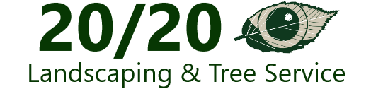 20/20 Landscaping & Tree Service Removal